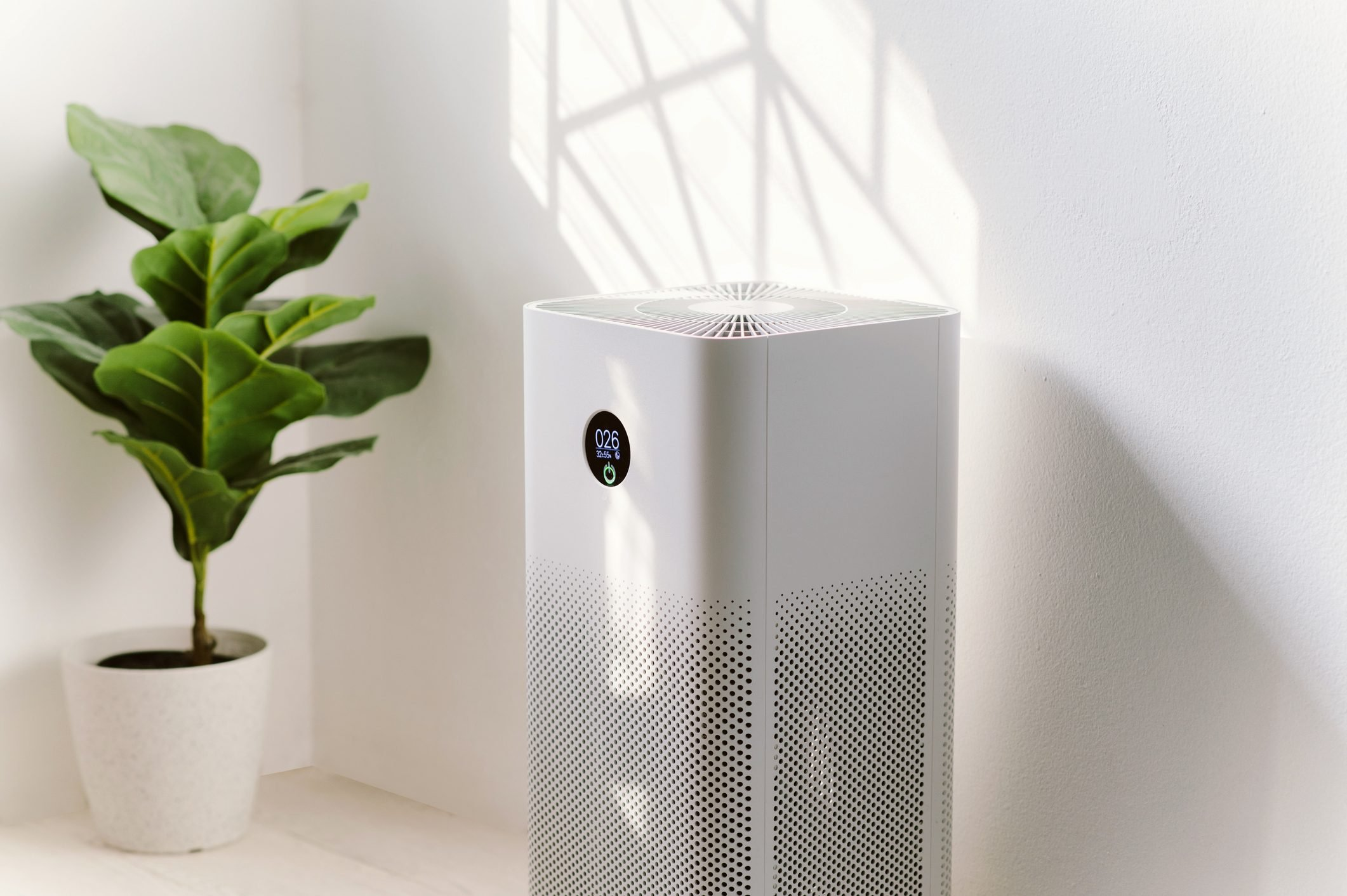 Probably The Most Ignored Fact About Air Purifier